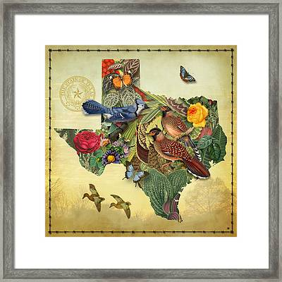 Plant Map Of Texas Framed Print by Gary Grayson