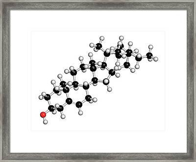 Plant Sterol Molecule Framed Print by Molekuul