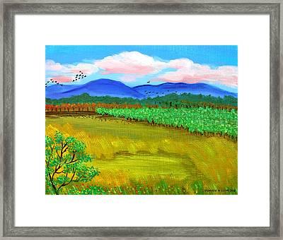 Plantation Framed Print by Cyril Maza