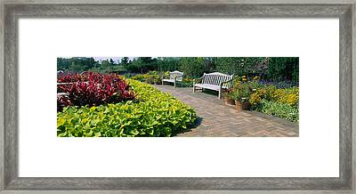 Plants In A Botanical Garden, Circle Framed Print by Panoramic Images