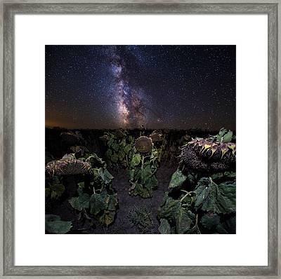 Plants Vs Milky Way Framed Print by Aaron J Groen