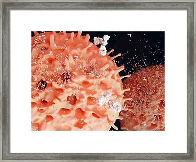 Plasma Cells Framed Print by Juan Gaertner