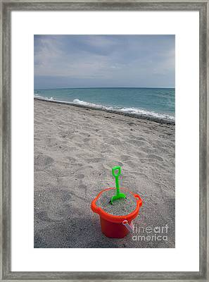 Play And Relax Framed Print by Amanda Barcon