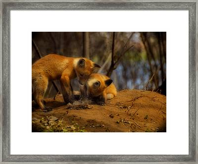 Play Time Framed Print by Thomas Young