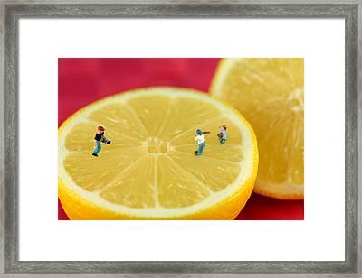 Playing Baseball On Lemon Framed Print by Paul Ge