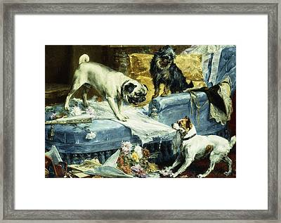 Playing Havoc Framed Print by Charles van den Evcken