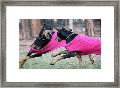 Playtime Framed Print by Rita Kay Adams