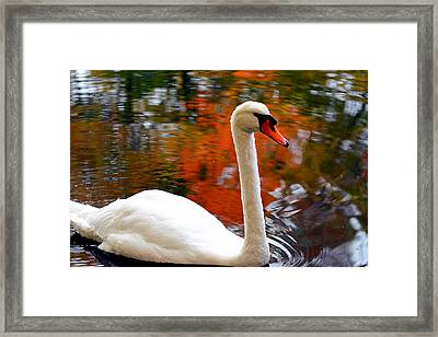 Pleasant Welcome Framed Print by Lourry Legarde