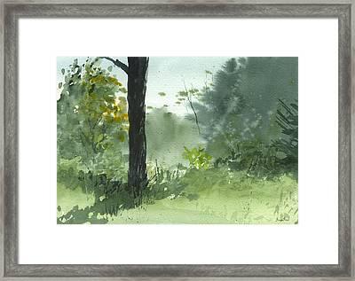 Plein Air 8-1-13 Framed Print by Sean Seal