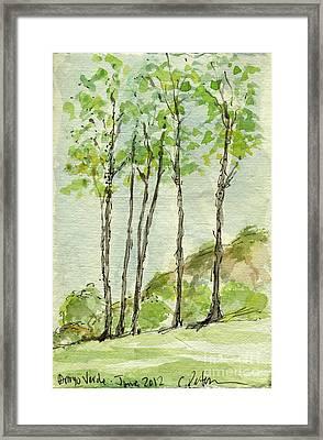 Plein Air Sketchbook. Arroyo Verde Park Ventura June 23. 2012. Trees Standing In A Row Framed Print by Cathy Peterson