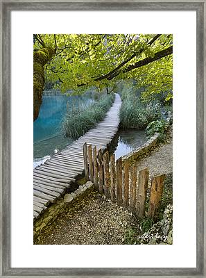 Plitvice Serenity Framed Print by Robert Lacy