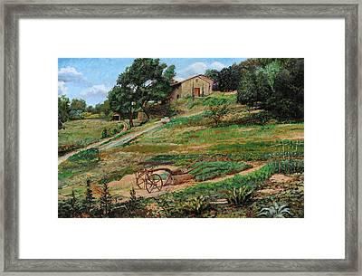 Plough, Cortona, 1999 Oil On Canvas Framed Print by Trevor Neal