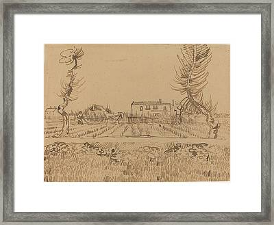 Ploughman In The Fields Near Arles Framed Print by Vincent van Gogh