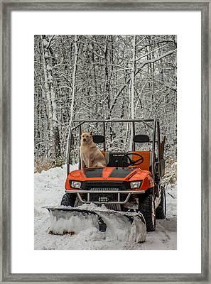 Plowing Companion Framed Print by Paul Freidlund