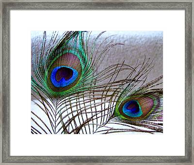 Plucked From Life Framed Print by Peter Piatt