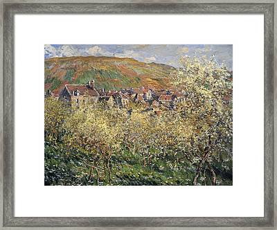 Plum Trees In Blossom At Vetheuil Framed Print by Claude Monet