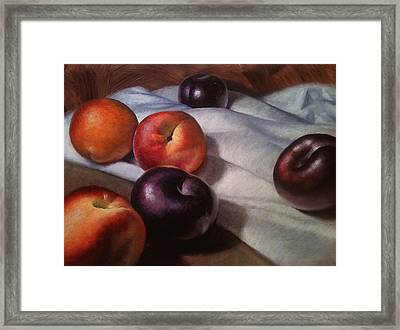 Plums And Nectarines Framed Print by Timothy Jones