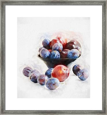 Plums On White Framed Print by HD Connelly
