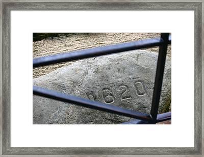 Plymouth Rock Framed Print by Veronica Vandenburg
