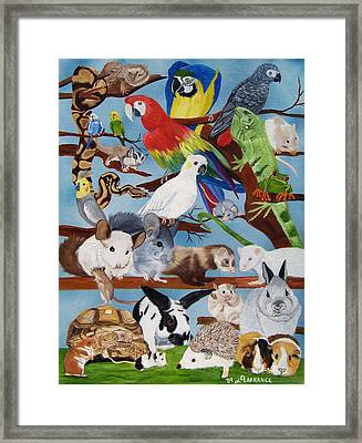Pocket Pets Framed Print by Debbie LaFrance