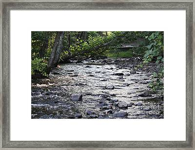 Poconos Gentle Stream Framed Print by John Telfer