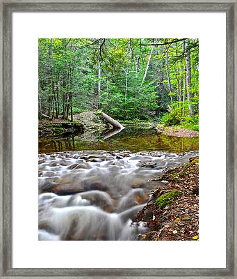 Poetic Side Of Nature Framed Print by Frozen in Time Fine Art Photography