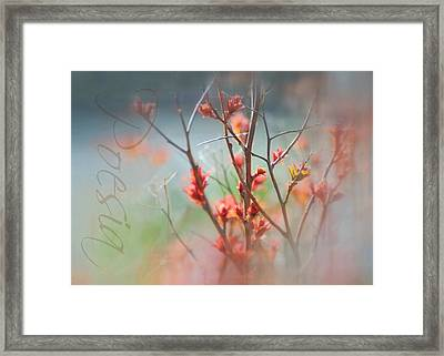 Poetry Framed Print by Diana Angstadt