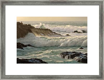 Point Lobos Seascape    Framed Print by Paul Krapf