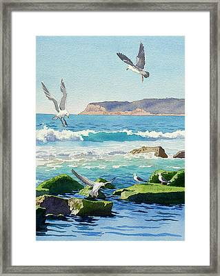 Point Loma Rocks Waves And Seagulls Framed Print by Mary Helmreich