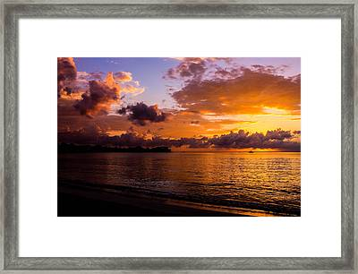 Point Paradise Framed Print by Todd Reese
