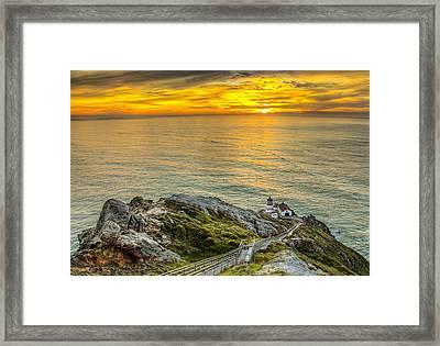 Point Reyes Lighthouse Framed Print by Chris Austin