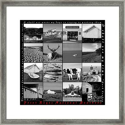 Point Reyes National Seashore 20150102 With Text Bw Framed Print by Wingsdomain Art and Photography