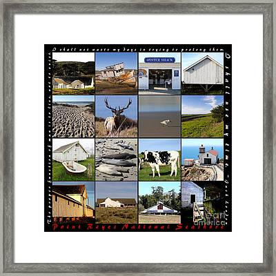 Point Reyes National Seashore 20150102 With Text Framed Print by Wingsdomain Art and Photography