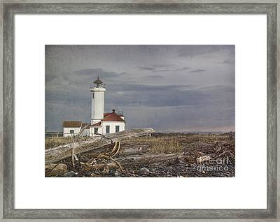 Point Wilson Framed Print by Elena Nosyreva