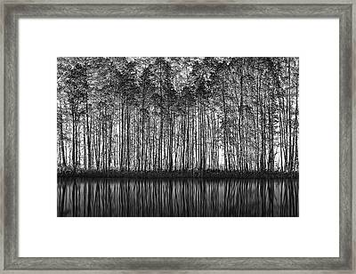 Pointillism Nature Framed Print by Roswitha Schleicher-schwarz