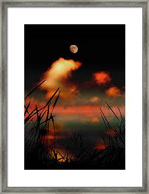 Pointing At The Moon Framed Print by Mal Bray