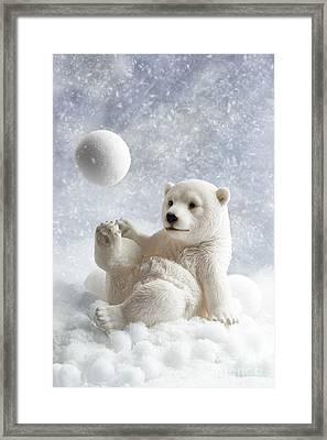 Polar Bear Decoration Framed Print by Amanda And Christopher Elwell