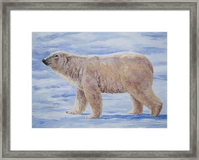 Polar Bear Mini Painting Framed Print by Crista Forest