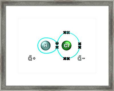 Polar Bond In Hydrogen Chloride Molecule Framed Print by Animate4.com/science Photo Libary