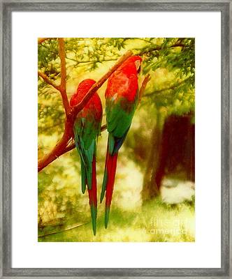 Polly Wants Two Crackers At New Orleans Louisiana Zoological Gardens  Framed Print by Michael Hoard