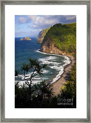 Pololu Framed Print by Aaron Whittemore