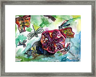 Pomegranate And Dragonflies Framed Print by Genevieve Esson