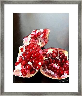 Pomegranate Detail Framed Print by Cole Black