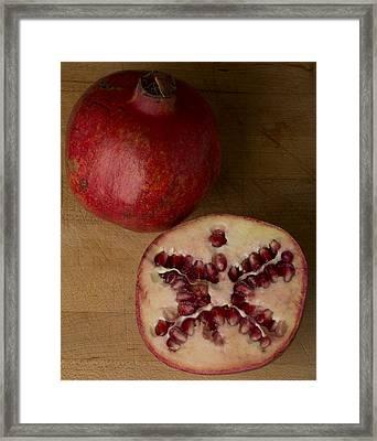 Pomegranates 2 Framed Print by Scott Campbell