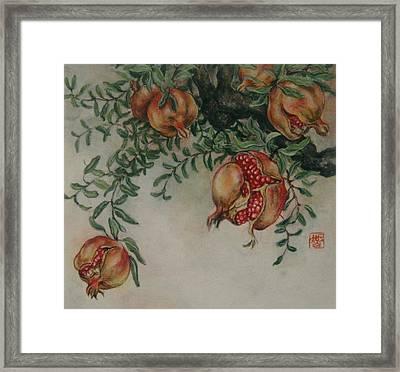 Pomegranates Framed Print by Tomoko Koyama