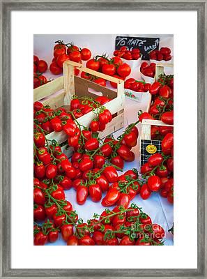 Pomodori Italiani Framed Print by Inge Johnsson