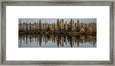 Pond Reflections Framed Print by Paul Freidlund