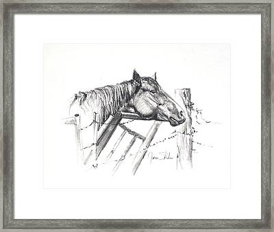 Pondering My Escape Framed Print by James Skiles
