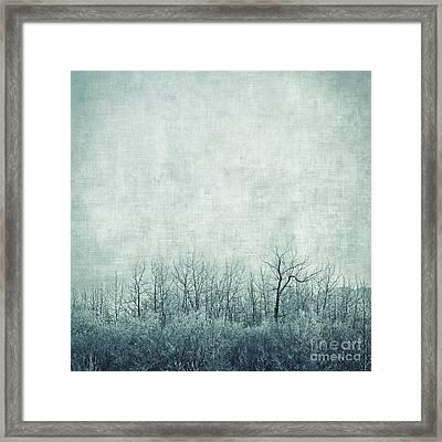 Pondering Silence Framed Print by Priska Wettstein