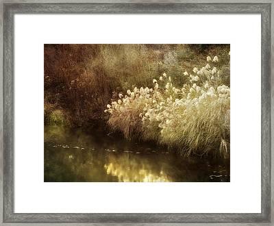 Pond's Edge Framed Print by Julie Palencia